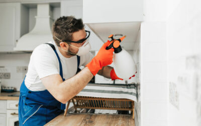 What the #1 Pest Control in Utah Can Do for You